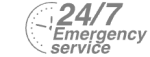 24/7 Emergency Service Pest Control in Bexleyheath, Upton, DA6. Call Now! 020 8166 9746